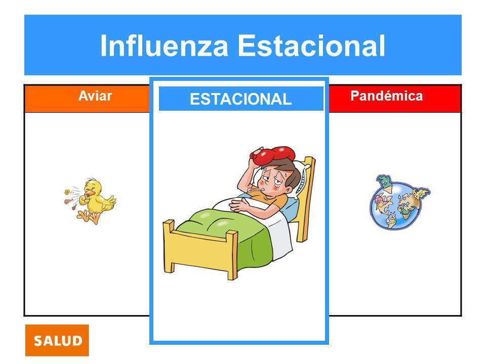 Influenza Estacional Aviar Estacional Pandémica ESTACIONAL