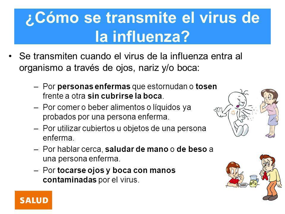 ¿Cómo se transmite el virus de la influenza? Se transmiten cuando el virus de la influenza entra al organismo a través de ojos, nariz y/o boca: –Por p