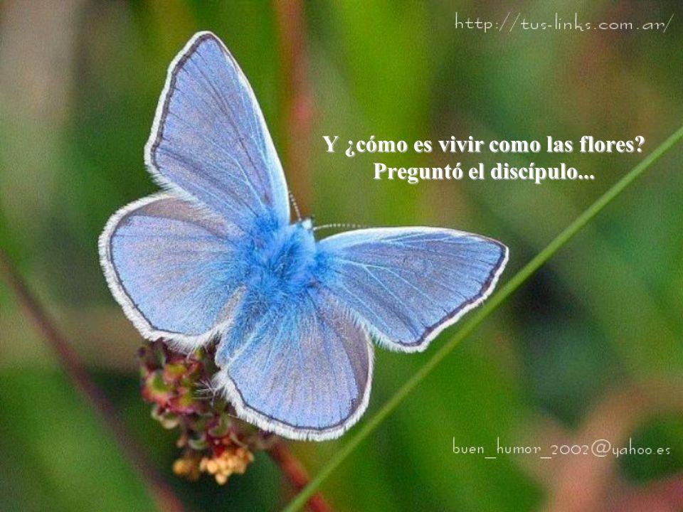 Y ¿cómo es vivir como las flores? Preguntó el discípulo...