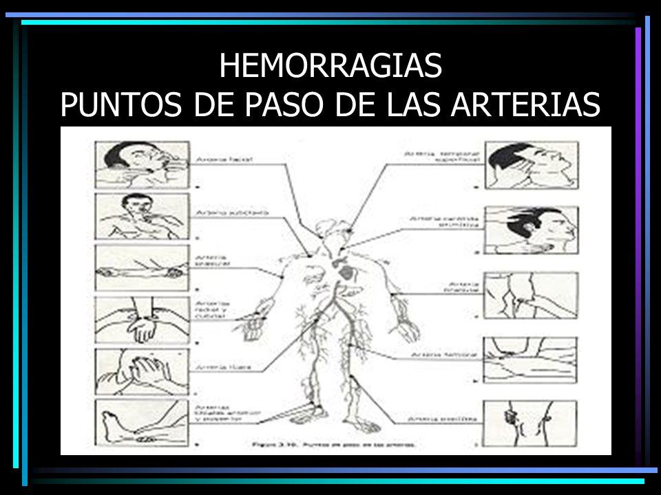 HEMORRAGIAS PUNTOS DE PASO DE LAS ARTERIAS