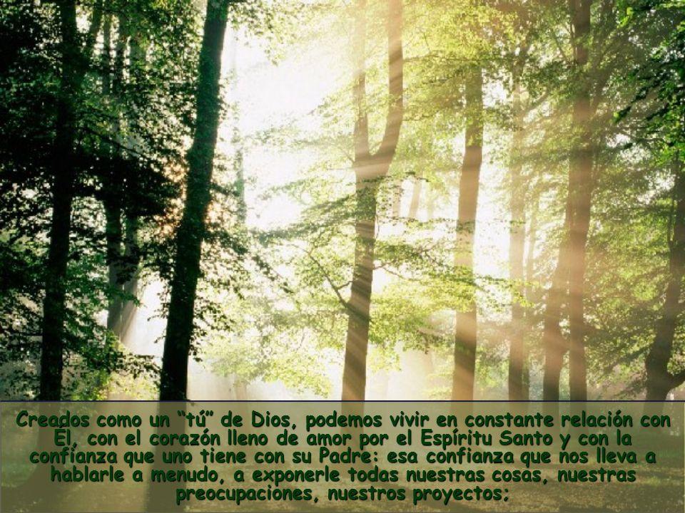 nos permite convertirnos en personas auténticas, con la dignidad plena de hijos e hijas de Dios.