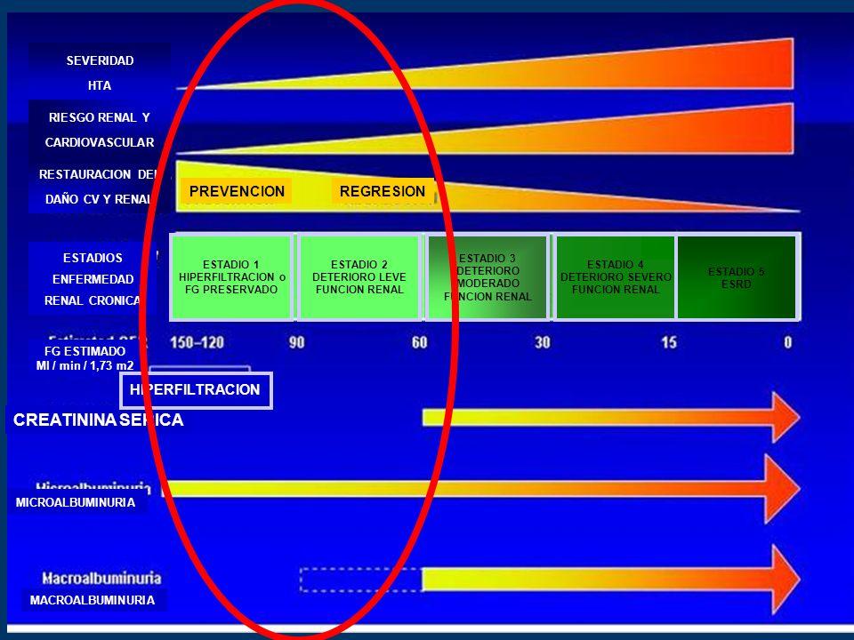 CREATININA SERICA MICROALBUMINURIA MACROALBUMINURIA MICROALBUMINURIA FG ESTIMADO Ml / min / 1,73 m2 HIPERFILTRACION ESTADIOS ENFERMEDAD RENAL CRONICA RESTAURACION DEL DAÑO CV Y RENAL RIESGO RENAL Y CARDIOVASCULAR SEVERIDAD HTA PREVENCIONREGRESION ESTADIO 1 HIPERFILTRACION o FG PRESERVADO ESTADIO 2 DETERIORO LEVE FUNCION RENAL ESTADIO 3 DETERIORO MODERADO FUNCION RENAL ESTADIO 4 DETERIORO SEVERO FUNCION RENAL ESTADIO 5 ESRD