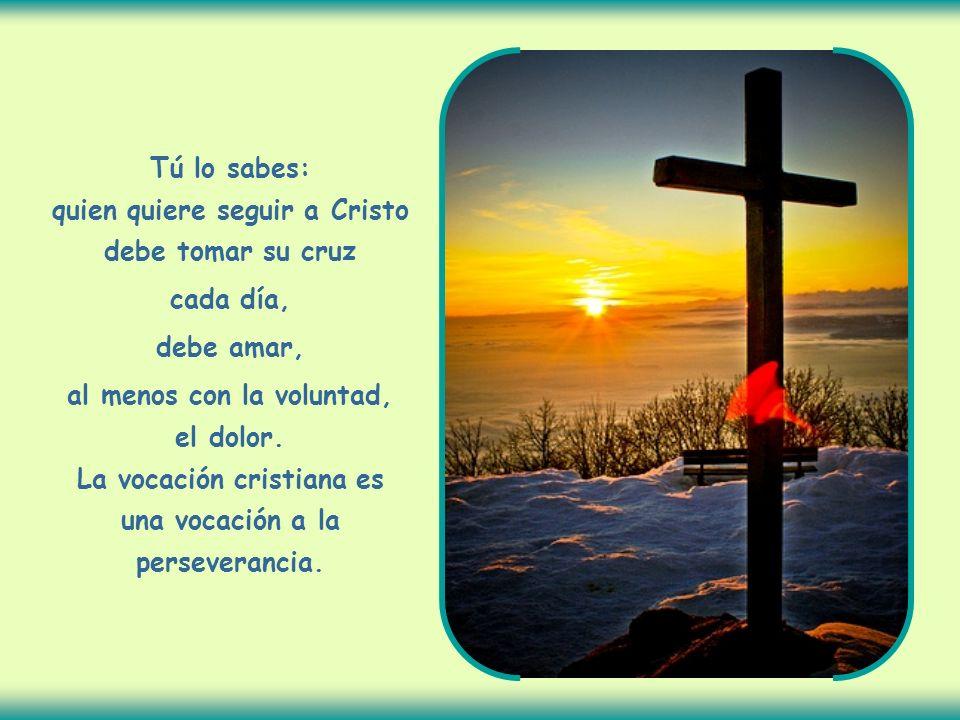 Tú lo sabes: quien quiere seguir a Cristo debe tomar su cruz cada día, debe amar, al menos con la voluntad, el dolor.