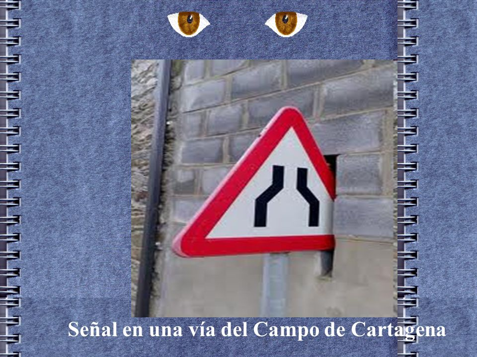 Estas señales estuvieron juntas varias semanas en Santa Cruz de Tenerife con motivo de las obras realizadas para el tranvía