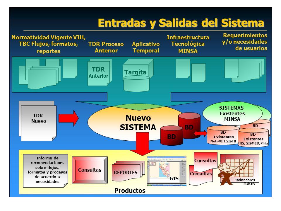 Entradas y Salidas del Sistema Nuevo SISTEMA REPORTES Consultas Informe de recomendaciones sobre flujos, formatos y procesos de acuerdo a necesidades