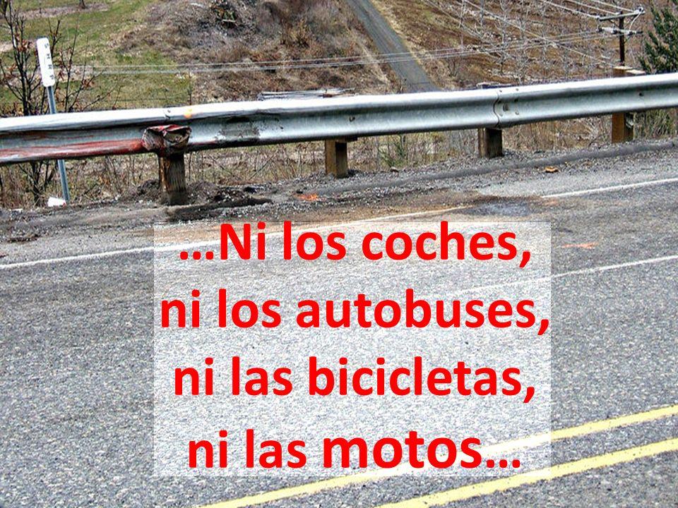 …Ni los coches, ni los autobuses, ni las bicicletas, ni las motos …