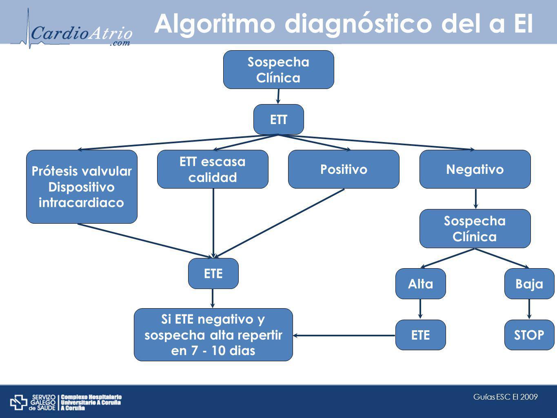 Algoritmo diagnóstico del a EI Sospecha Clínica ETT Prótesis valvular Dispositivo intracardiaco ETT escasa calidad PositivoNegativo ETE Sospecha Clíni