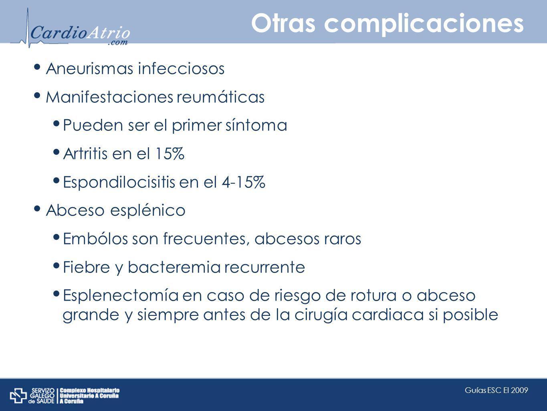 Otras complicaciones Aneurismas infecciosos Manifestaciones reumáticas Pueden ser el primer síntoma Artritis en el 15% Espondilocisitis en el 4-15% Ab