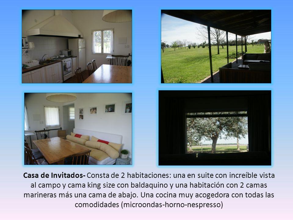 Casa de Invitados- Consta de 2 habitaciones: una en suite con increíble vista al campo y cama king size con baldaquino y una habitación con 2 camas ma