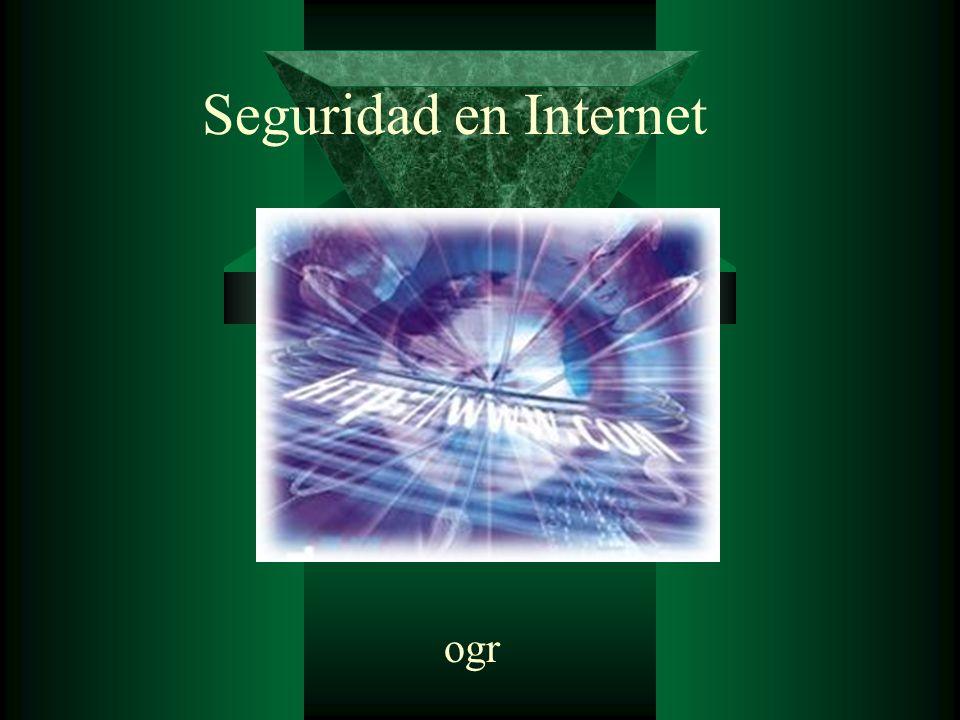 ogr Seguridad en Internet