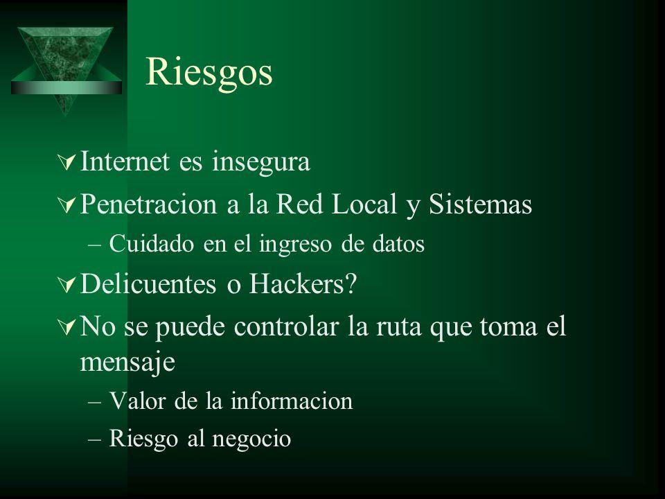 Riesgos Internet es insegura Penetracion a la Red Local y Sistemas –Cuidado en el ingreso de datos Delicuentes o Hackers.
