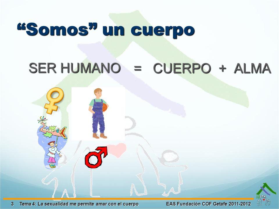 Somos un cuerpo SER HUMANO 3EAS Fundación COF Getafe 2011-2012Tema 4: La sexualidad me permite amar con el cuerpo = CUERPO + ALMA