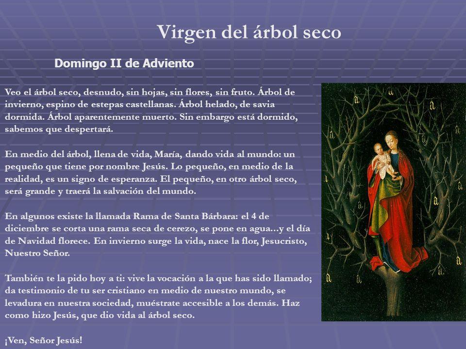 Virgen de la Luz Sábado II de Adviento Encender la corona de Adviento, cada domingo, es una manera de ir poniendo tu luz en medio de nuestras oscurida