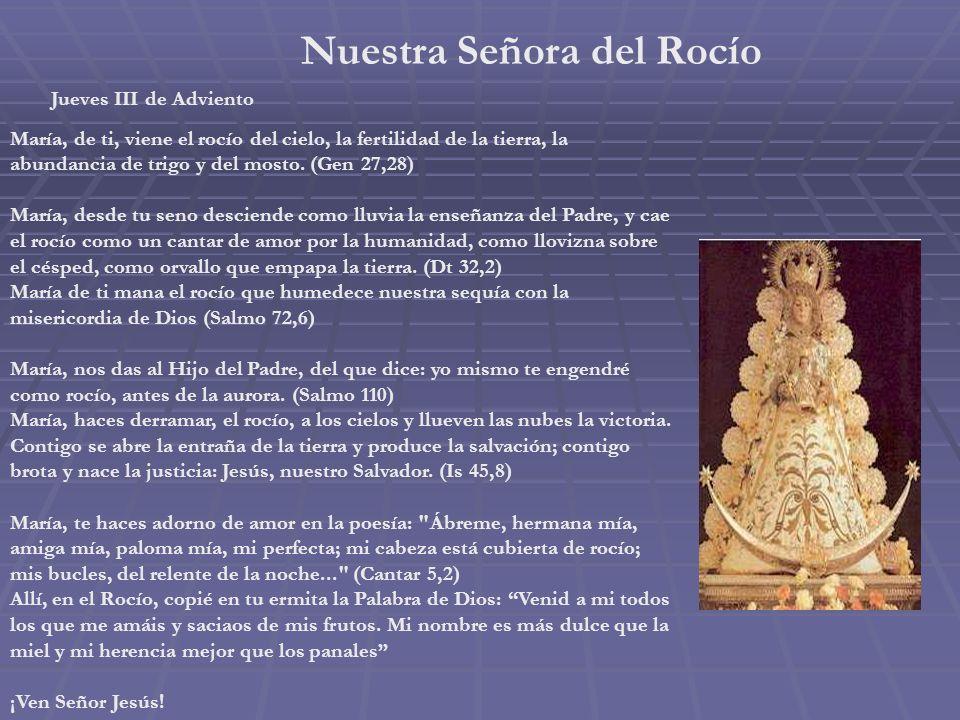 Nuestra Señora del Buen Consejo Miércoles III de Adviento En los alrededores de Roma está el santuario de Genazzano. El papa San Marco lo mandó constr