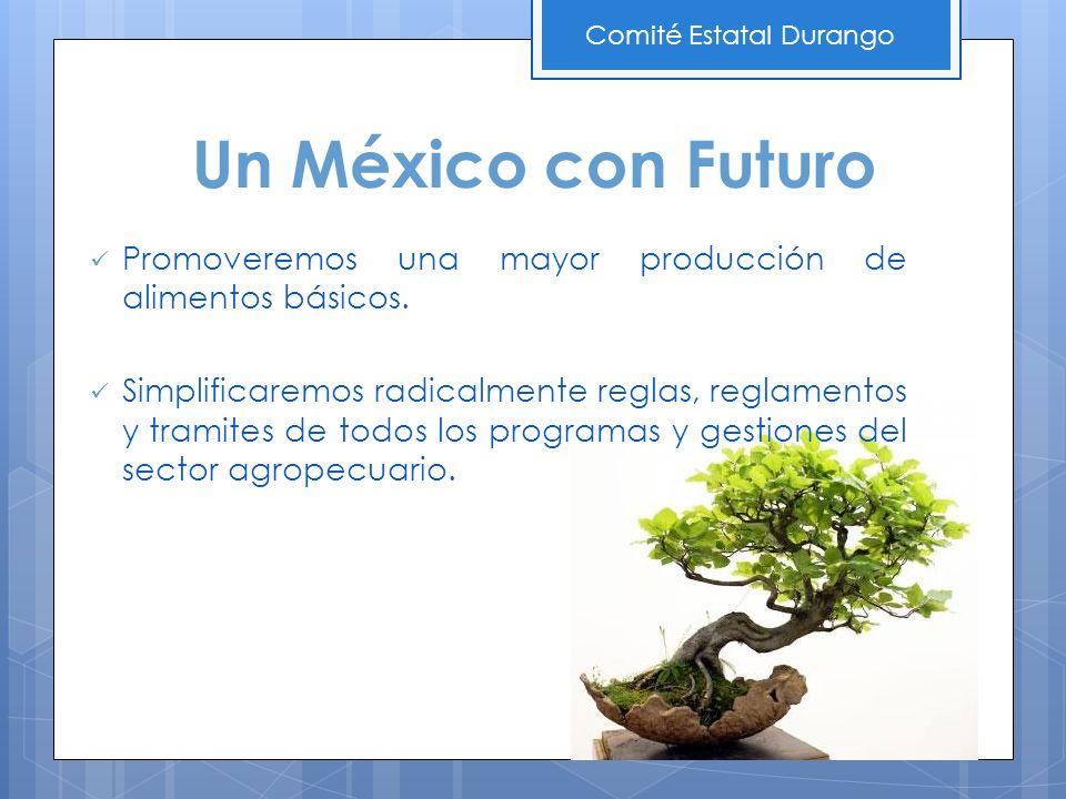 Promoveremos una mayor producción de alimentos básicos. Simplificaremos radicalmente reglas, reglamentos y tramites de todos los programas y gestiones