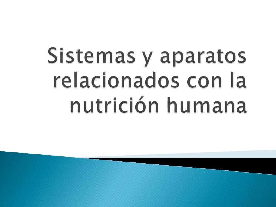FIN Raquel Domínguez (información de libro de texto : Bioloxía e xeoloxía 3º ESO(Mac Graw Hill))