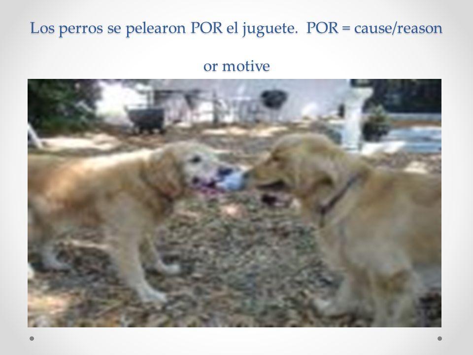 Los perros se pelearon POR el juguete. POR = cause/reason or motive