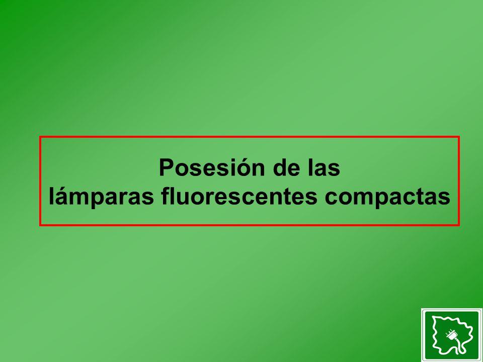 Posesión de las lámparas fluorescentes compactas
