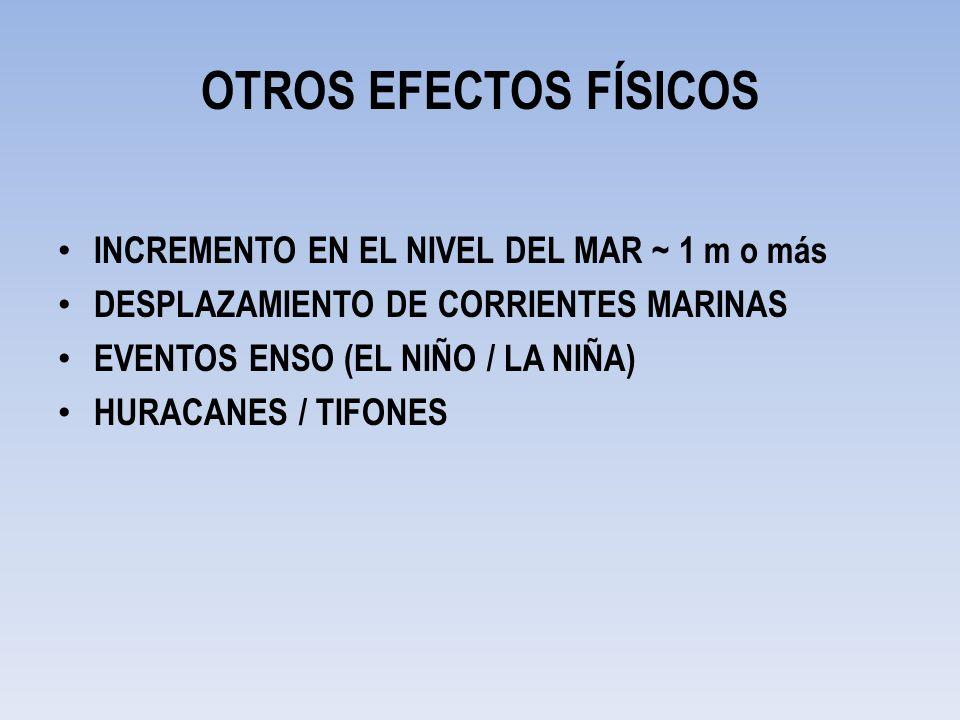 OTROS EFECTOS FÍSICOS INCREMENTO EN EL NIVEL DEL MAR ~ 1 m o más DESPLAZAMIENTO DE CORRIENTES MARINAS EVENTOS ENSO (EL NIÑO / LA NIÑA) HURACANES / TIF