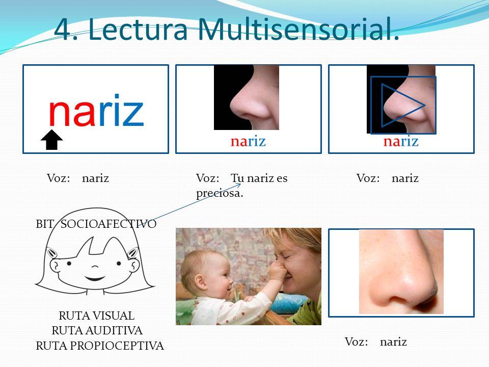 4. Lectura Multisensorial. nariz Voz: narizVoz: Tu nariz es preciosa. Voz: nariz nariz Voz: nariz RUTA VISUAL RUTA AUDITIVA RUTA PROPIOCEPTIVA BIT SOC