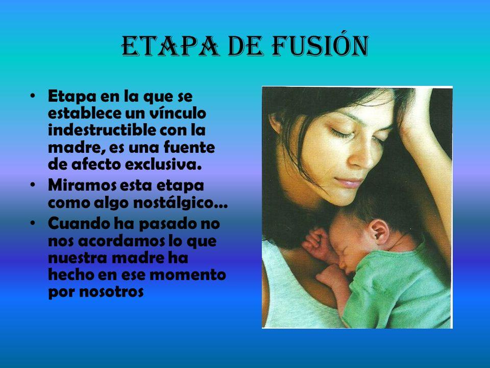Etapa de Fusión Etapa en la que se establece un vínculo indestructible con la madre, es una fuente de afecto exclusiva. Miramos esta etapa como algo n