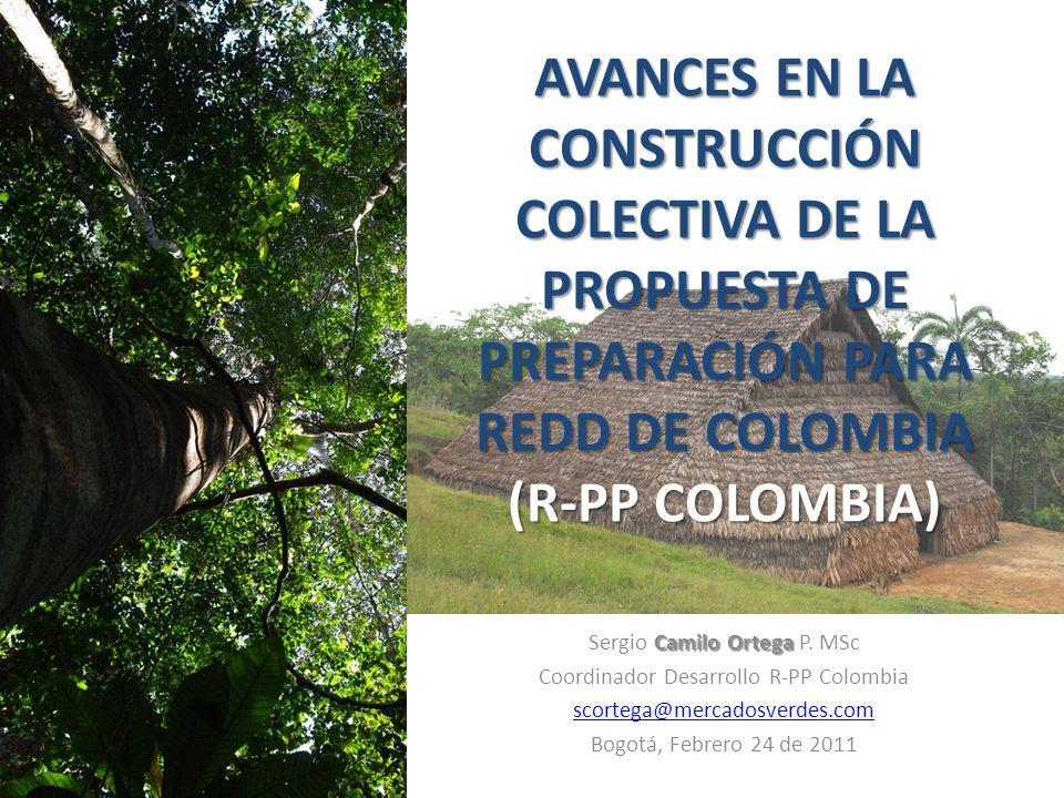 AVANCES EN LA CONSTRUCCIÓN COLECTIVA DE LA PROPUESTA DE PREPARACIÓN PARA REDD DE COLOMBIA (R-PP COLOMBIA) Camilo Ortega Sergio Camilo Ortega P.