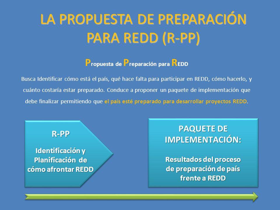 LA PROPUESTA DE PREPARACIÓN PARA REDD (R-PP) P ropuesta de P reparación para R EDD Busca Identificar cómo está el país, qué hace falta para participar en REDD, cómo hacerlo, y cuánto costaría estar preparado.