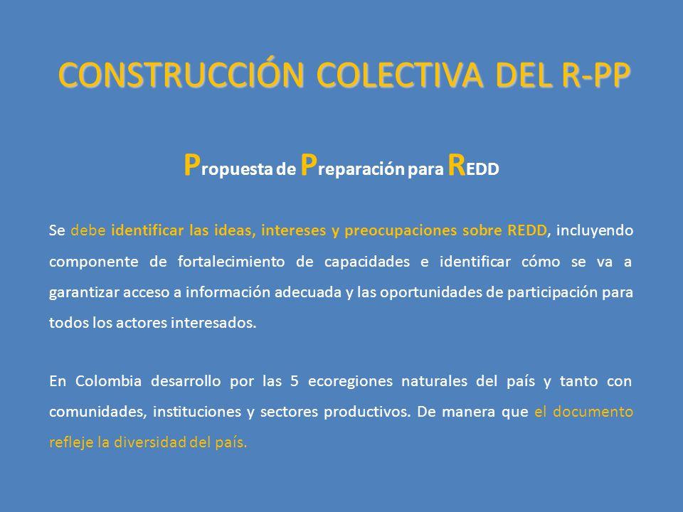 CONSTRUCCIÓN COLECTIVA DEL R-PP P ropuesta de P reparación para R EDD Se debe identificar las ideas, intereses y preocupaciones sobre REDD, incluyendo componente de fortalecimiento de capacidades e identificar cómo se va a garantizar acceso a información adecuada y las oportunidades de participación para todos los actores interesados.