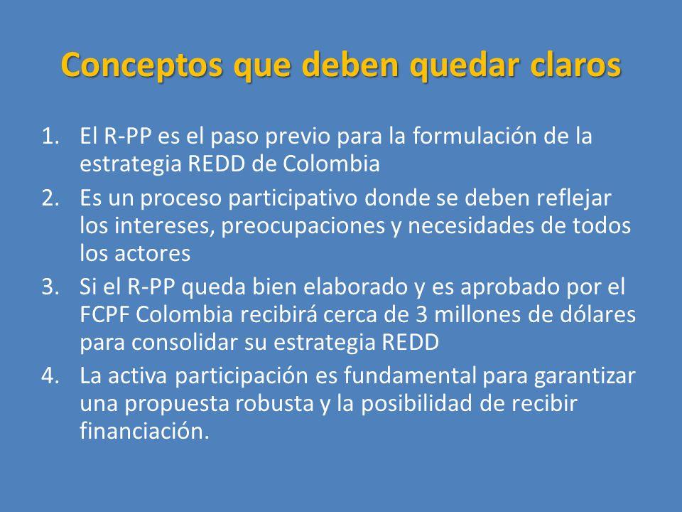 Conceptos que deben quedar claros 1.El R-PP es el paso previo para la formulación de la estrategia REDD de Colombia 2.Es un proceso participativo donde se deben reflejar los intereses, preocupaciones y necesidades de todos los actores 3.Si el R-PP queda bien elaborado y es aprobado por el FCPF Colombia recibirá cerca de 3 millones de dólares para consolidar su estrategia REDD 4.La activa participación es fundamental para garantizar una propuesta robusta y la posibilidad de recibir financiación.