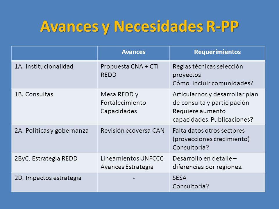 Avances y Necesidades R-PP AvancesRequerimientos 1A.
