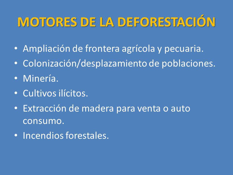 MOTORES DE LA DEFORESTACIÓN Ampliación de frontera agrícola y pecuaria.