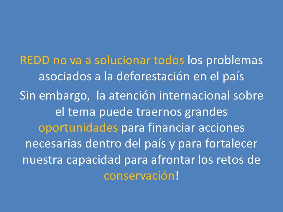 REDD no va a solucionar todos los problemas asociados a la deforestación en el país Sin embargo, la atención internacional sobre el tema puede traernos grandes oportunidades para financiar acciones necesarias dentro del país y para fortalecer nuestra capacidad para afrontar los retos de conservación!