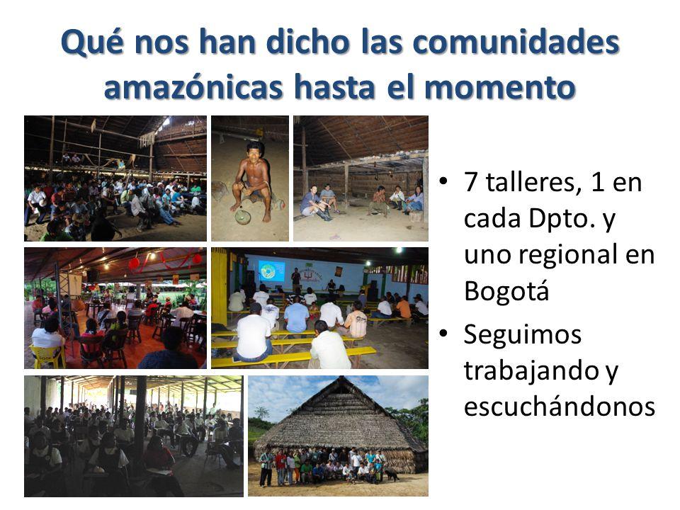 Qué nos han dicho las comunidades amazónicas hasta el momento 7 talleres, 1 en cada Dpto.