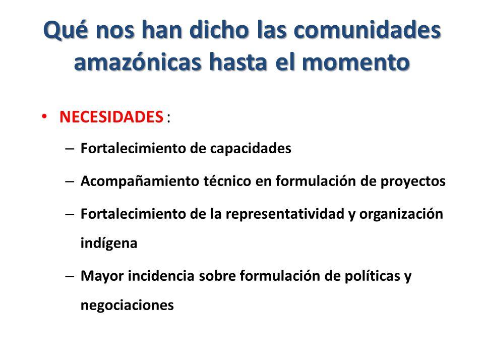 Qué nos han dicho las comunidades amazónicas hasta el momento NECESIDADES : – Fortalecimiento de capacidades – Acompañamiento técnico en formulación de proyectos – Fortalecimiento de la representatividad y organización indígena – Mayor incidencia sobre formulación de políticas y negociaciones