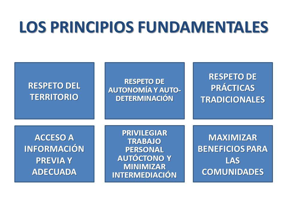 LOS PRINCIPIOS FUNDAMENTALES RESPETO DEL TERRITORIO RESPETO DE AUTONOMÍA Y AUTO- DETERMINACIÓN RESPETO DE PRÁCTICAS TRADICIONALES ACCESO A INFORMACIÓN PREVIA Y ADECUADA PRIVILEGIAR TRABAJO PERSONAL AUTÓCTONO Y MINIMIZAR INTERMEDIACIÓN MAXIMIZAR BENEFICIOS PARA LAS COMUNIDADES