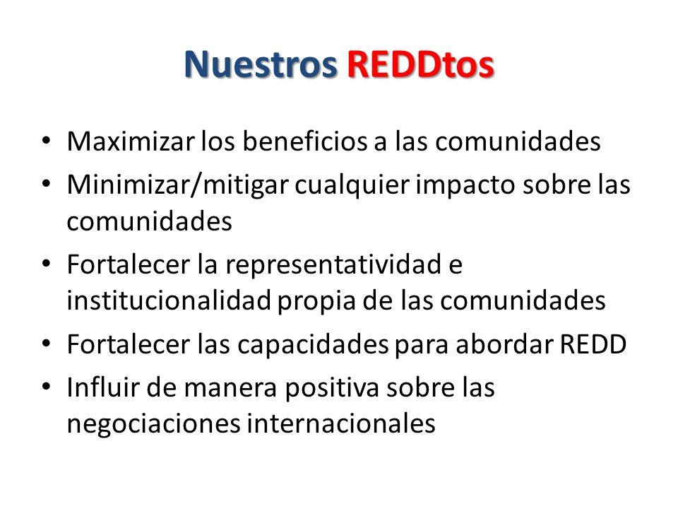 Nuestros REDDtos Maximizar los beneficios a las comunidades Minimizar/mitigar cualquier impacto sobre las comunidades Fortalecer la representatividad e institucionalidad propia de las comunidades Fortalecer las capacidades para abordar REDD Influir de manera positiva sobre las negociaciones internacionales