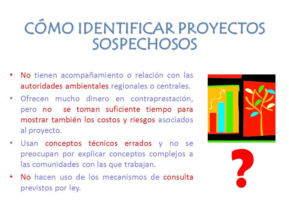 Qué nos han dicho las comunidades amazónicas hasta el momento INTERESES : – Fortalecimiento de la representatividad – Se reglamente la consulta previa – Los proyectos REDD sean sencillos para poder participar – Este proceso se mantenga en el tiempo