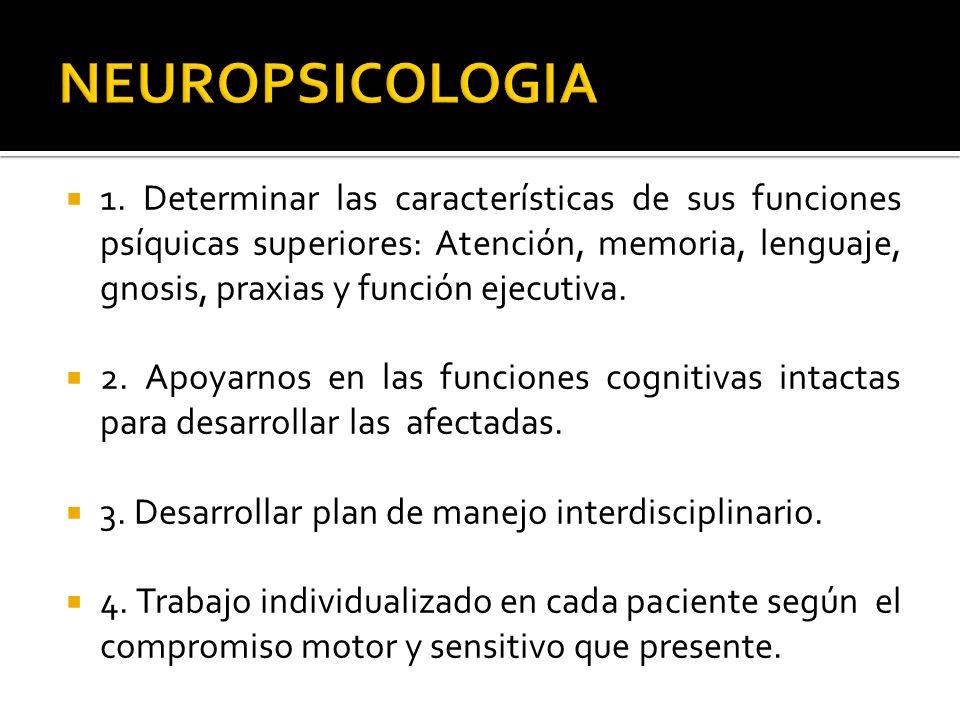 1. Determinar las características de sus funciones psíquicas superiores: Atención, memoria, lenguaje, gnosis, praxias y función ejecutiva. 2. Apoyarno