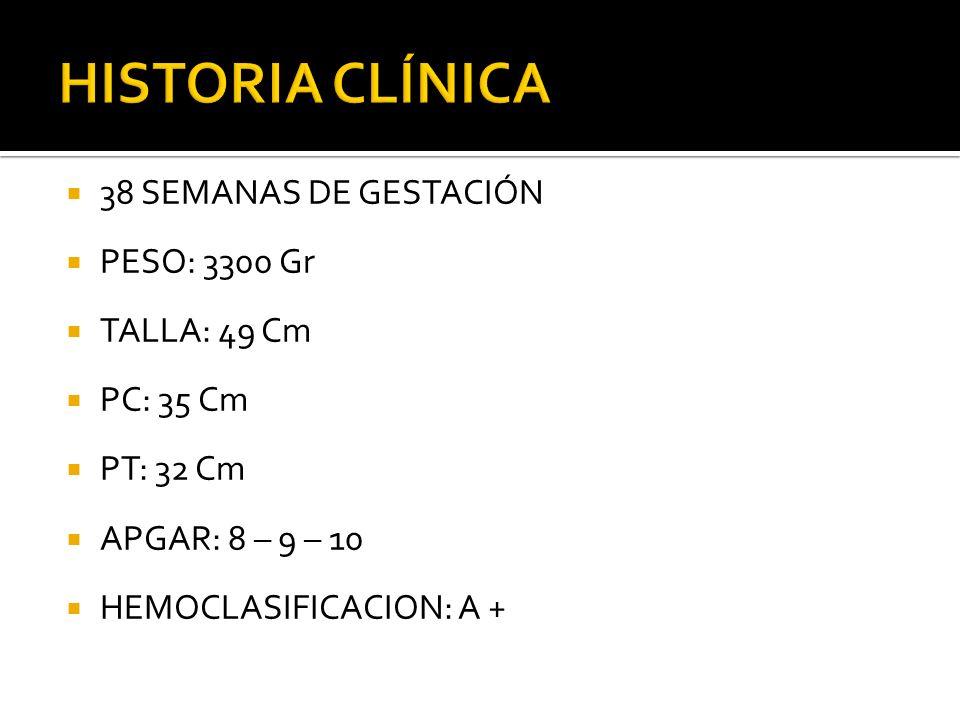 38 SEMANAS DE GESTACIÓN PESO: 3300 Gr TALLA: 49 Cm PC: 35 Cm PT: 32 Cm APGAR: 8 – 9 – 10 HEMOCLASIFICACION: A +