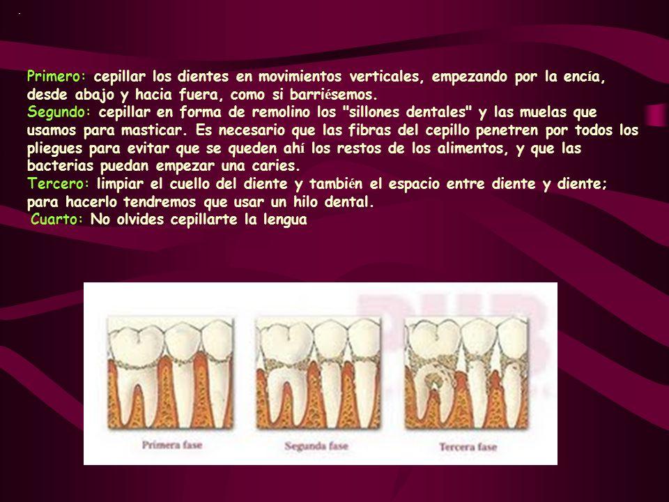 . Primero: cepillar los dientes en movimientos verticales, empezando por la enc í a, desde abajo y hacia fuera, como si barri é semos. Segundo: cepill