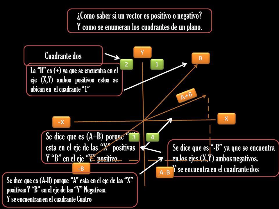 ¿Como saber si un vector es positivo o negativo? Y como se enumeran los cuadrantes de un plano. La B es (+) ya que se encuentra en el eje (X,Y) ambos