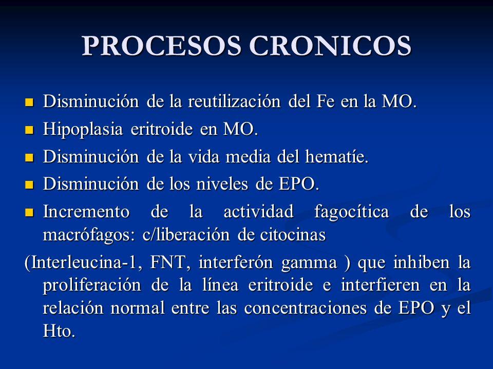 PROCESOS CRONICOS Disminución de la reutilización del Fe en la MO.