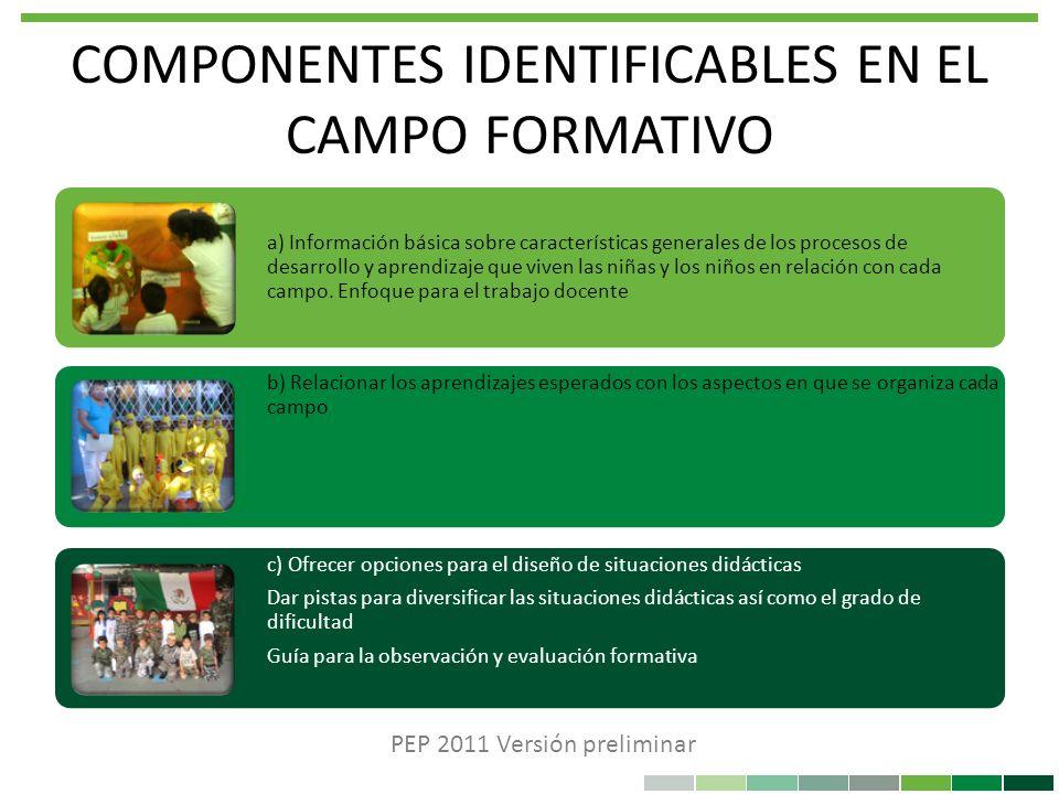 COMPONENTES IDENTIFICABLES EN EL CAMPO FORMATIVO a) Información básica sobre características generales de los procesos de desarrollo y aprendizaje que