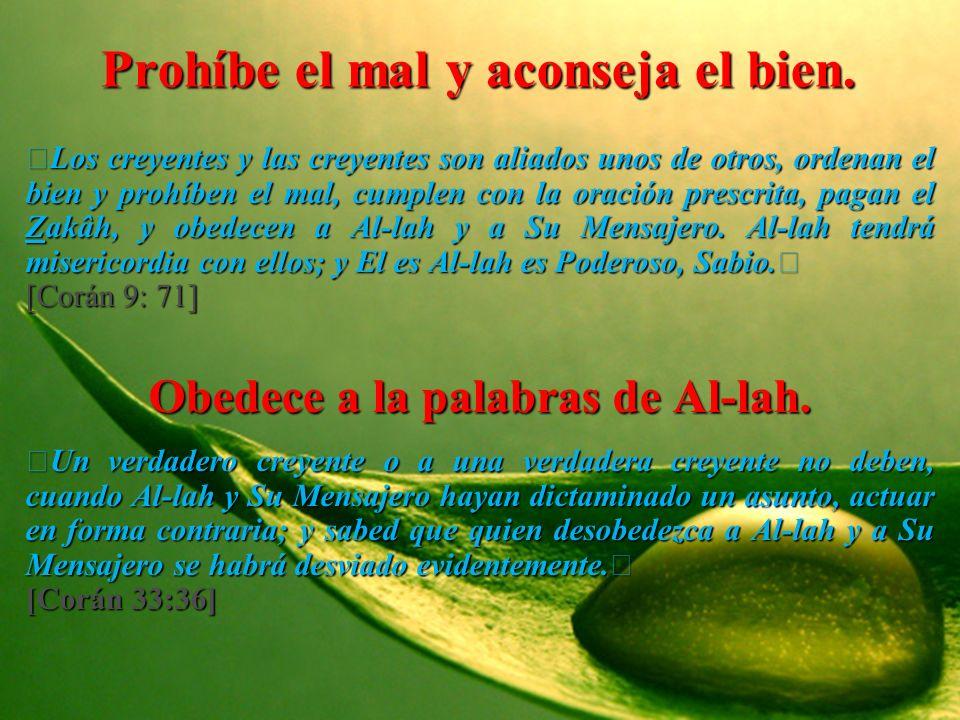 Prohíbe el mal y aconseja el bien. Los creyentes y las creyentes son aliados unos de otros, ordenan el bien y prohíben el mal, cumplen con la oración