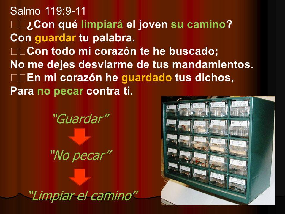 Salmo 119:9-11 ¿Con qué limpiará el joven su camino? Con guardar tu palabra. Con todo mi corazón te he buscado; No me dejes desviarme de tus mandamien