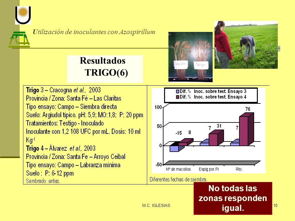 Utilización de inoculantes con Azospirillum Resultados TRIGO(6) M.C. IGLESIAS10 No todas las zonas responden igual.