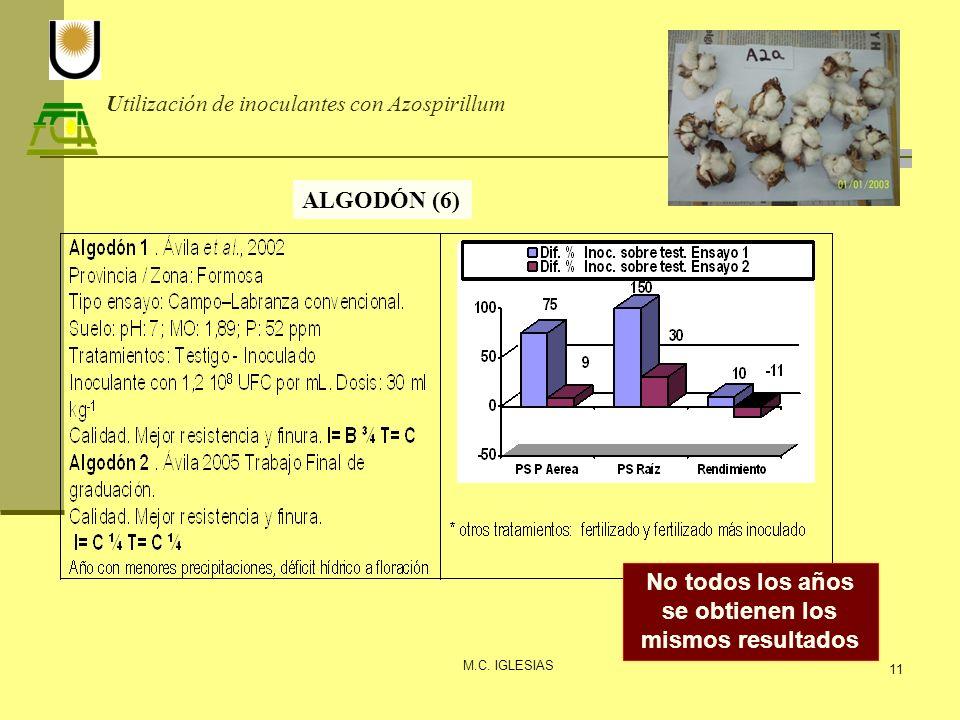 Utilización de inoculantes con Azospirillum M.C. IGLESIAS 11 ALGODÓN (6) No todos los años se obtienen los mismos resultados