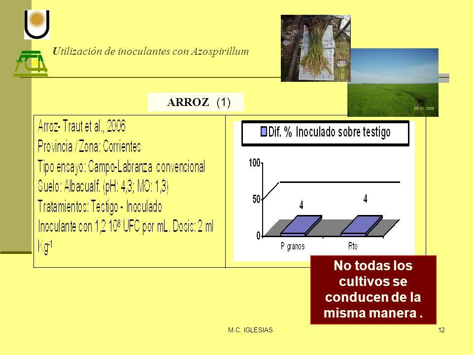 Utilización de inoculantes con Azospirillum M.C. IGLESIAS12 ARROZ (1) No todas los cultivos se conducen de la misma manera.