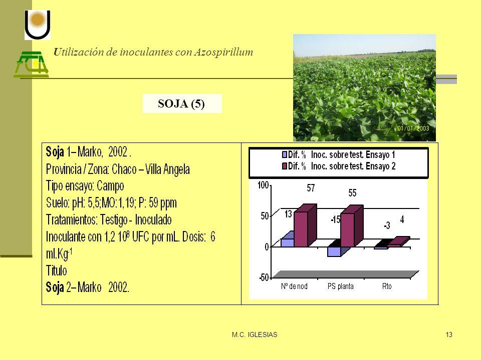 Utilización de inoculantes con Azospirillum M.C. IGLESIAS13 SOJA (5)