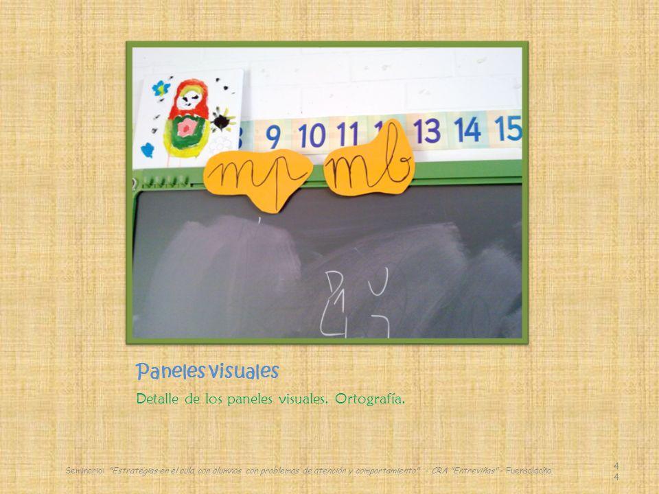 Paneles visuales Detalle de los paneles visuales.Ortografía.